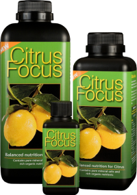 Growth Technology Citrus Focus 1l