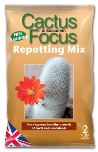Growth Technology Cactus repotting Mix